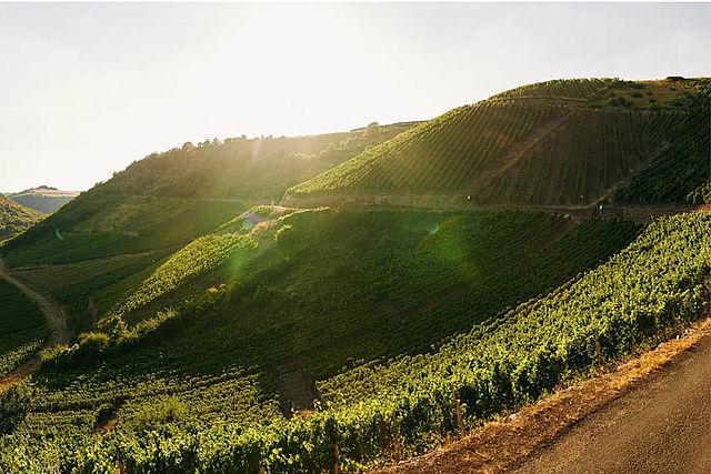 Mooiste uitzicht wijngebied: Niederhausen met haar steile wijngaarden