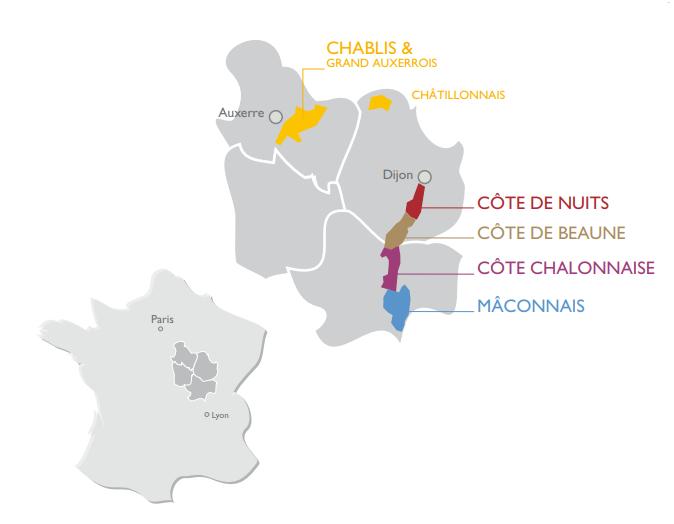 Bourgogne Fantastische Chablis